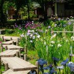 私の保育料高い?札幌市の保育料を計算・試算しよう!(平成29年度版)